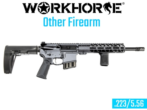 [WORKHORSE-CT1] WORKHORSE® OTHER FIREARM